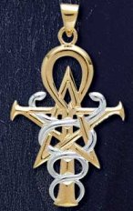 14ct Gold Plate and Sterling Silver Two Tone Wizardry Symbol - Click for Detail VIEW