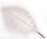 Fluffy White-Natural Quill with Removable Gold Nib