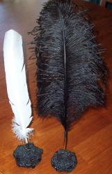 Black and White Quills in Black Banksia Nut Pen Stand - Click for Detail